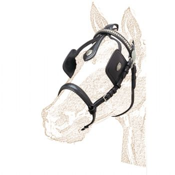 Leather driving bridle